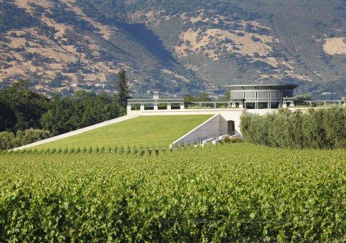 Nhà máy rượu Opus One công bố Christopher Lynch là Giám đốc điều hành mới