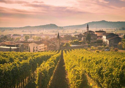 Amarone là gì? Tại sao rượu vang Amarone lại đắt như vậy?