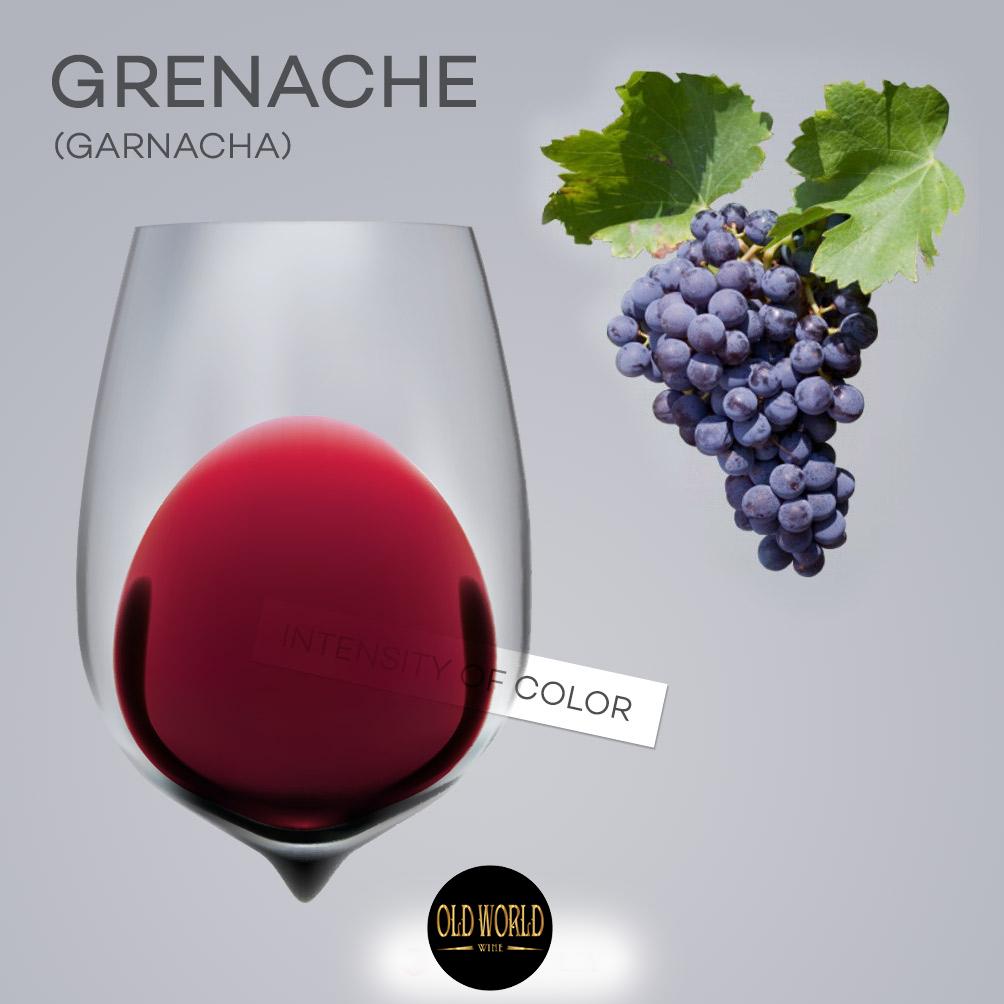Grenache là gì? Sự thật đáng ngạc nhiên về rượu vang Grenache