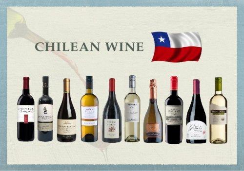 Tổng hợp thông tin về rượu vang Chile. Các dòng rượu vang Chile