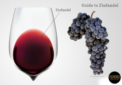 Zinfandel là gì? Tìm hiểu rượu vang Zinfandel