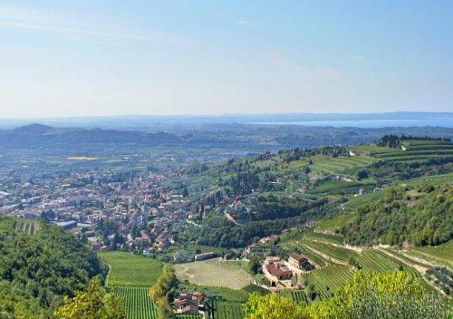 Valpolicella là gì? Phong cách nho và rượu vang Valpolicella